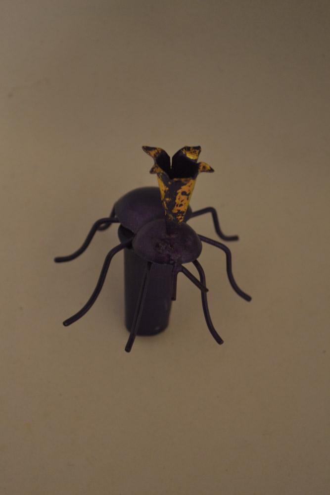 DSC_0495 flessenstop insect